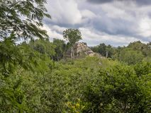 Het Nationale Park van Yaxhanakum Naranjo, Mayan Archeologisch Monument, Guatemala stock fotografie