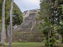 Het Nationale Park van Yaxhanakum Naranjo, Mayan Archeologisch Monument, Guatemala stock foto