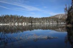 Het Nationale Park van Yellowstone - Meer Royalty-vrije Stock Fotografie