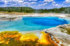 Het Nationale Park van Yellowstone, Wyoming, de V Royalty-vrije Stock Foto's