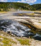 Het Nationale Park van Yellowstone, Wyoming, de V Royalty-vrije Stock Foto