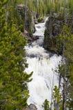 Het Nationale Park van Yellowstone, Wyoming, de V.S. Stock Foto