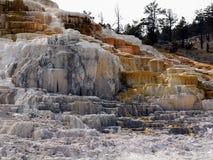 Het Nationale Park van Yellowstone, Wyoming, Verenigde Staten Royalty-vrije Stock Foto