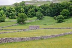 Het Nationale Park van Yorkshire Stock Foto