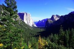 Het Nationale Park van Yosemite Stock Foto