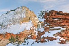 Het Nationale Park van Zion stock fotografie