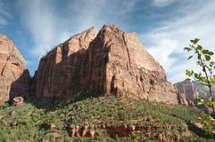 Het Nationale Park van Zion Stock Afbeelding