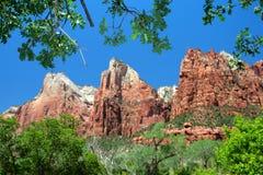 Het Nationale Park van Zion, de V.S. Royalty-vrije Stock Afbeeldingen