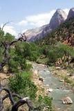 Het Nationale Park van Zion, Utah royalty-vrije stock foto's