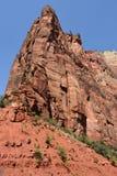 Het Nationale Park van Zion in Utah Royalty-vrije Stock Foto's