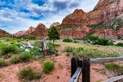Het Nationale Park van Zion, Utah royalty-vrije stock fotografie