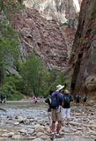 Het Nationale Park van Zion, Utah, de V royalty-vrije stock afbeeldingen