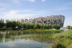 Het Nationale Stadion van Peking Stock Afbeeldingen