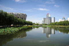 Het Nationale Stadion van Peking met de moderne bouw Stock Afbeelding