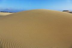 Het Natuurlijke Domein van Oceanoduinen, Californië stock afbeelding
