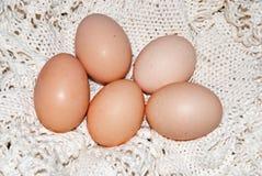 Het natuurlijke ei van Pasen Stock Fotografie