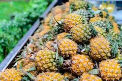 Het Natuurlijke Fruit van de stapelananas Royalty-vrije Stock Foto's