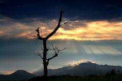 Het natuurlijke landschap, het Overzeese Zuid- van China Eiland China, Royalty-vrije Stock Foto's