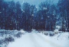 Het natuurlijke landschap van de winter Royalty-vrije Stock Afbeelding