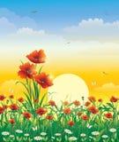 Het natuurlijke landschap van de zomer royalty-vrije illustratie