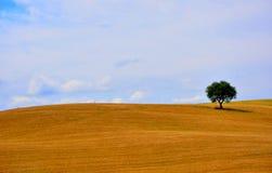 Het natuurlijke landschap van Toscanië, Italië Stock Fotografie