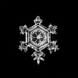 Het natuurlijke macrostuk van de kristalsneeuwvlok van ijs Stock Afbeelding