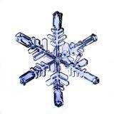 Het natuurlijke macrostuk van de kristalsneeuwvlok van ijs Stock Afbeeldingen