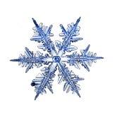 Het natuurlijke macrostuk van de kristalsneeuwvlok van ijs Stock Foto's
