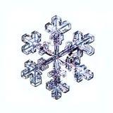 Het natuurlijke macrostuk van de kristalsneeuwvlok van ijs Stock Fotografie