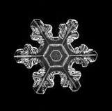 Het natuurlijke macrostuk van de kristalsneeuwvlok van ijs Royalty-vrije Stock Foto