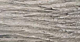 Het natuurlijke oude bruine patroon van de korst houten textuur of schors houten achtergrond voor binnenlands of buitenontwerp me Stock Fotografie