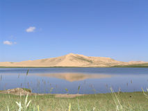 Het Natuurreservaat Pratas van het Meer van Qinghai Royalty-vrije Stock Afbeelding