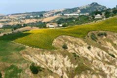 Het natuurreservaat van Atri (Italië), landschap bij de zomer stock foto's