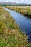 Het Natuurreservaat van het Borthmoeras in Wales, het UK stock foto