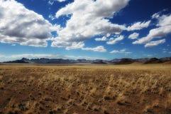 Het Natuurreservaat van de Rand van Namib (Namibië) Stock Fotografie