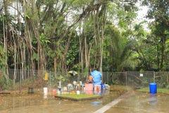 Het natuurreservaat van de Sembawangwarmwaterbron in Singapore Stock Afbeelding