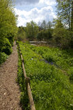 Het natuurreservaat van de Straat van Camley in Londen Stock Foto's