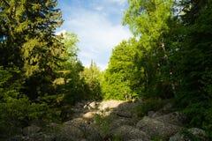 Het natuurverschijnsel van de steenrivier in Vitosha Natuurreservaat dichtbij Sofia, Bulgarije Het Gouden Bruggengebied Royalty-vrije Stock Afbeelding