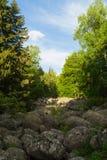 Het natuurverschijnsel van de steenrivier in Vitosha Natuurreservaat dichtbij Sofia, Bulgarije Het Gouden Bruggengebied Royalty-vrije Stock Foto's