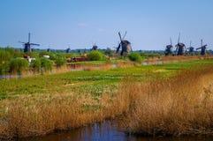 Het Nederlandse landschap van de polder met windmolens stock afbeeldingen