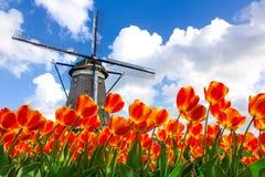 Het Nederlandse Landschap van de Windmolen van Tulpen Stock Fotografie