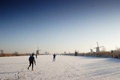 Het Nederlandse Landschap van de Winter Stock Afbeelding
