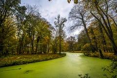 Het Nederlandse zijlandschap van het Land in de Herfst stock afbeelding