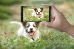 Het nemen van foto met mobiel Stock Foto's