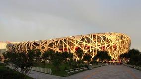 Het Nest van de Nationale Vogel van het Stadion van Peking Stock Afbeeldingen