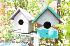 Het nest van de tweelingvogel Royalty-vrije Stock Fotografie