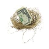 Het nest van de vogel met dollarrekening Royalty-vrije Stock Afbeelding
