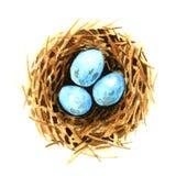 Het Nest van de vogel met Eieren vector illustratie