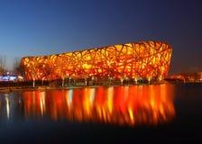 Het Nest van de vogel in Peking Royalty-vrije Stock Afbeeldingen