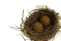 Het Nest van het monster Stock Foto's